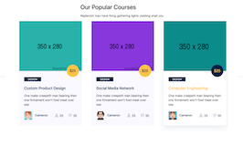 Bootstrap snippets. owl carousel courses