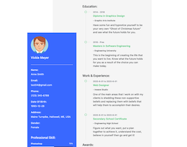 Bootstrap candidate resume example
