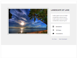 Bootstrap snippet gallery item