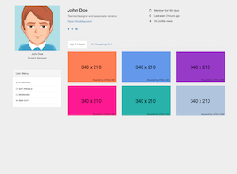 Bootstrap snippets. shopping and portfolio profile