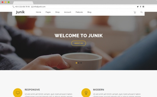Bootstrap template Junik Multipurpose Creative Template