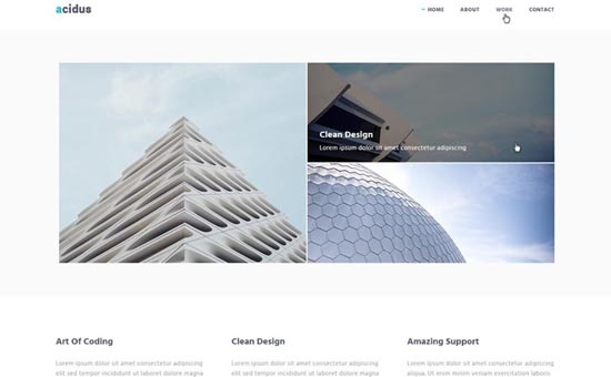Bootstrap template Acidus